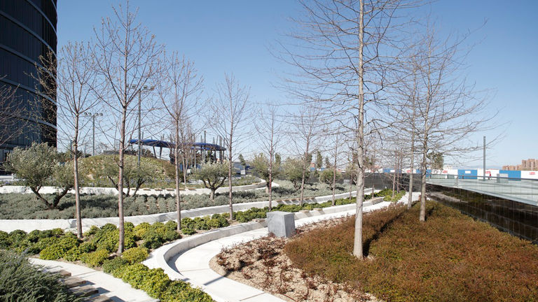 Large open spaces at Las Cuatro Torres featuring tree-lined walkways and inspiring artworks